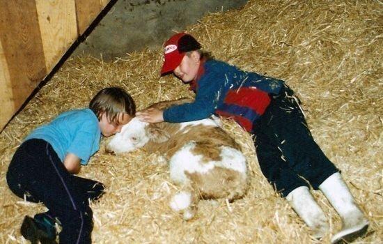 Unbeschwertes Familienerlebnis auf dem Bauernhof