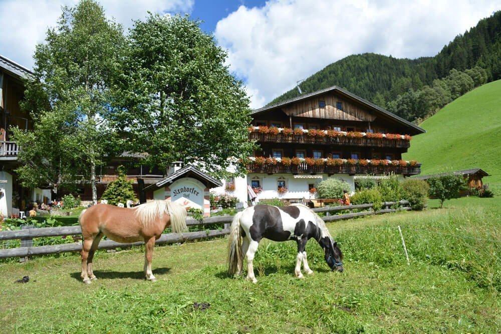 Vacanza escursionistica in Val Pusteria